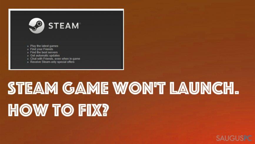 """Nepasileidžia """"Steam"""" žaidimas"""